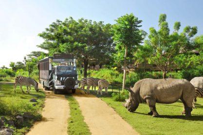 Bali-Safari-Marine-Park-enjoyable-in-Gianyar-Bali-Indonesia-39-1024x682
